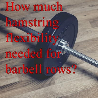 How Important Is Hamstring Flexibility For The Barbell Row