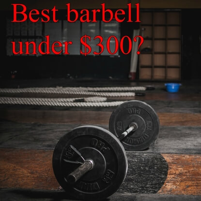 The Best Barbells for Your Money - Under $300