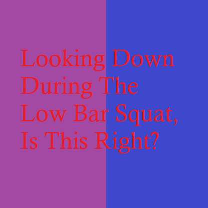 Looking Down During The Low Bar Squat, Is This Right?