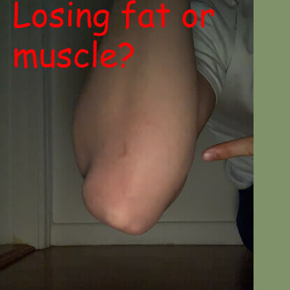 Losing muscle or fat?