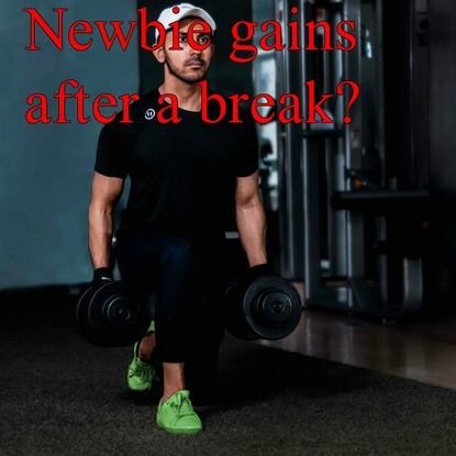 Six Things You Need To Know About Newbie Gains After A Break