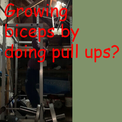 Will my biceps grow if you do pull ups everyday?